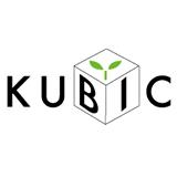 kubic